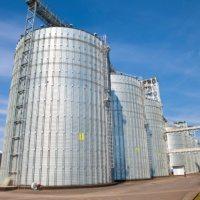Ціни на зерно, соняшник, кукурудзу (на 17.03.2017)