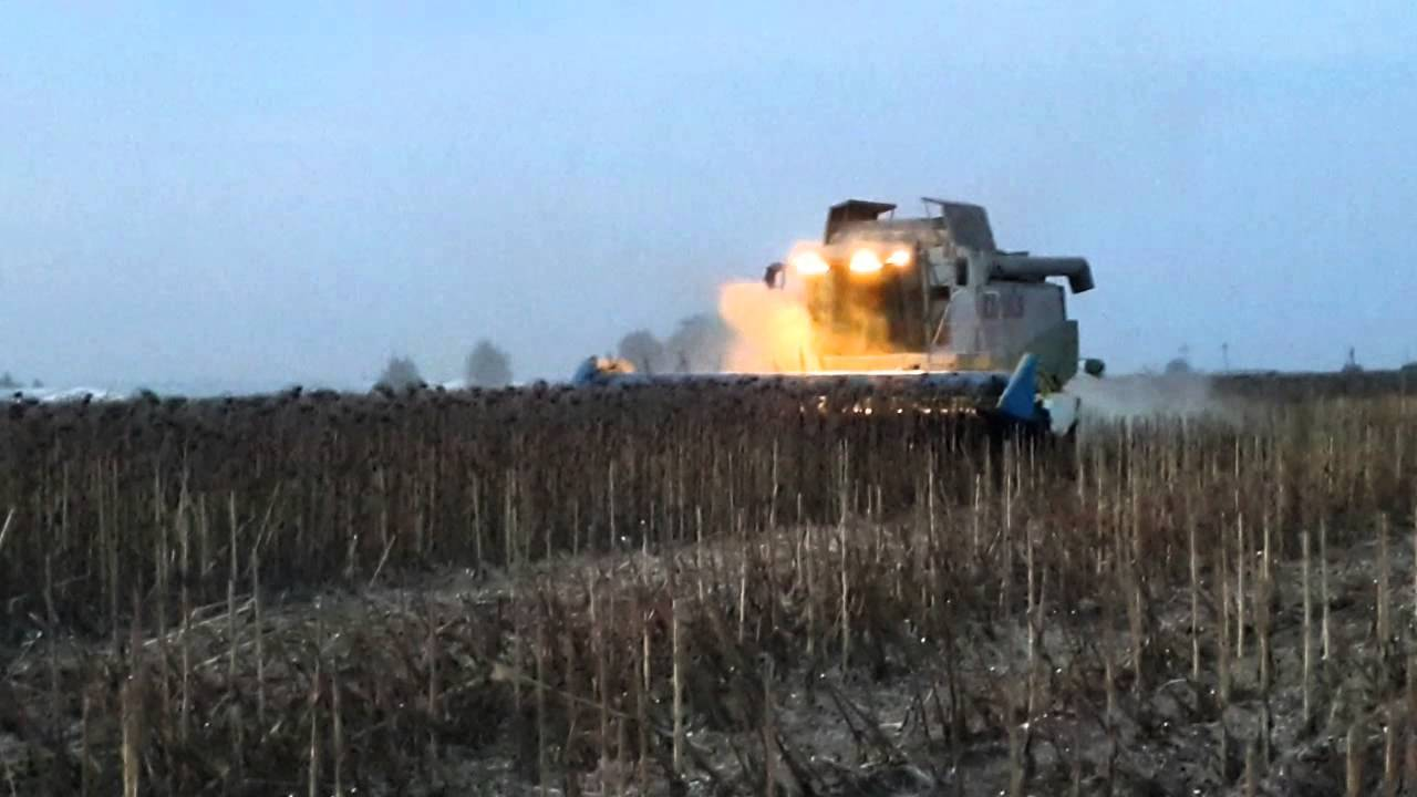 Стан справ у галузі рослинництва у Донецькій області (на 06.11.2017)